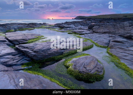 Pink sunset above Trevose Head from the rocky shores of Booby's Bay, Cornwall, England. Summer (August) 2017. - Stock Image