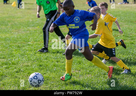 New York , September 29, 2018: 7 and 8 year old boys are playing a league soccer game. - Stock Image