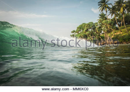 Scenic view of sea wave and palm trees, Indian ocean, Sri Lanka - Stock Image
