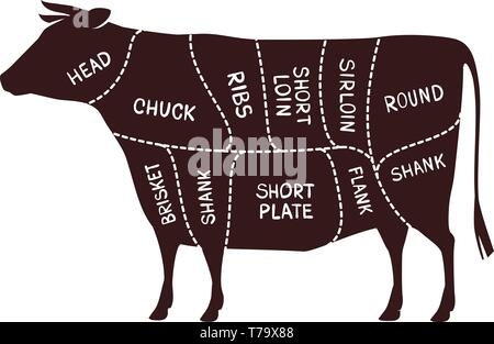 Cow cutting scheme. Butcher shop, beef vector illustration - Stock Image
