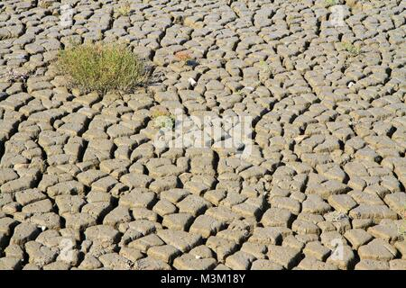 Cracked dry mud in Camargue, Provence, France - Stock Image