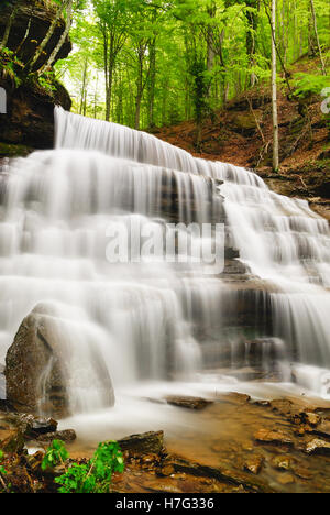 Wild waterfall in spring into the forest - Stock Image