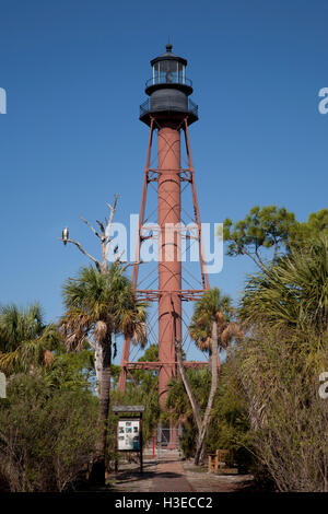 Anclote Light with park information signage stands against a blue sky while an osprey on a dried branch looks on. - Stock Image