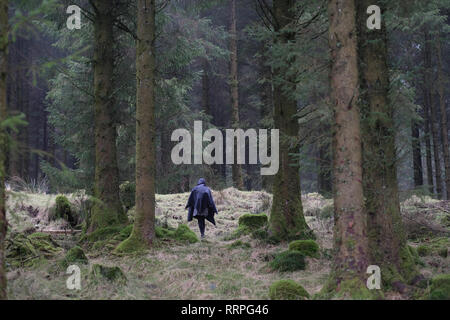 A woman walking alone in a forest. - Stock Image