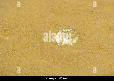 one bitcoin crypto coin on brilliant golden sand. finding and mining cryptocurrency - Stock Image