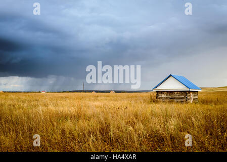 Single wooden cabin hut in a field of yellow grass with rainy storm clouds in the background - Stock Image