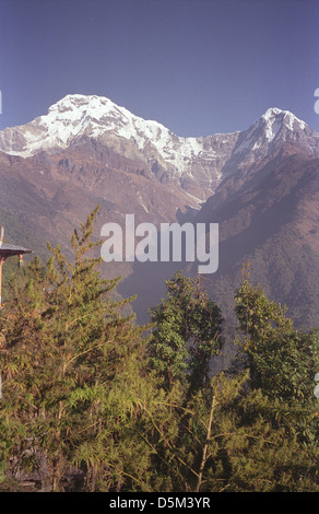 Modi Khola Valley and snow peaks from Himalayan View Guest House Chomrong on Annapurna circuit Nepal Himalayas - Stock Image