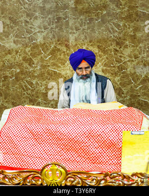 Middle aged devotee Sikh man with a long flowing white beard wearing a blue turban and glasses, Golden Temple of Amritsar, Amritsar, Punjab, India - Stock Image