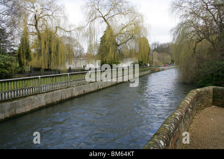 River Itchen, Winchester, Hampshire, UK - Stock Image