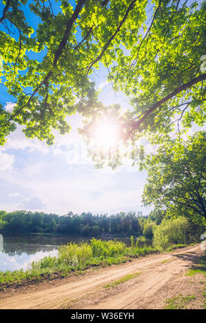 Beautiful scenic background with oak foliage on the background of the summer sky with bright sunshine - Stock Image