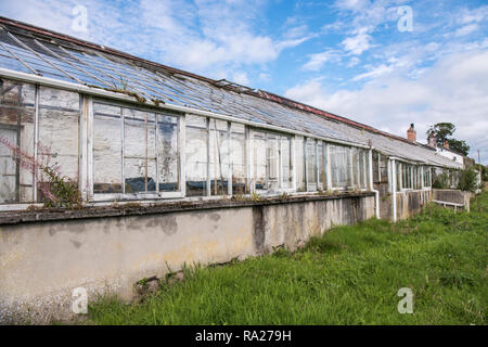 Old, abandoned greenhouse with broken glass panes and windows. - Stock Image