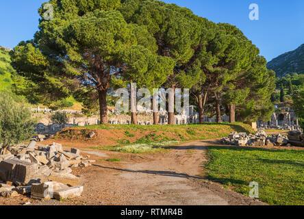 Ruins of ancient Ephesus, Selcuk, Izmir Province, Turkey - Stock Image