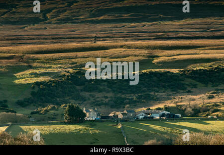 North Pennines AONB landscape, Hield House farm, Holwick, Teesdale, County Durham, UK  in early morning winter sunshine - Stock Image
