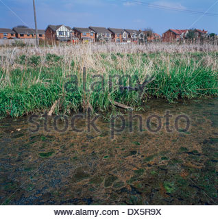 Land close to new housing development, polluted with buried industrial waste, Heath End, Walsall, West Midlands, UK - Stock Image