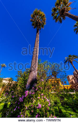 Gardens, The Alcázar of Seville (Real Alcazar) is a royal palace in Seville, Spain, built for the Christian king Peter of Castile. - Stock Image
