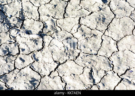 Close-up of dried cracked mud with fissures and gaps in the dried arid earth - Stock Image