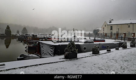Crooke, Greater Manchester. 30th January 2019. A light covering of snow fell over North West England over night into 30.1.19. The boats moored in the marina at the former coal mining village of Crooke near Wigan in Greater Manchester got a covering; while the canal didn't freeze the morning remained foggy and misty. Credit: Colin Wareing/Alamy Live News Cw 6582 - Stock Image