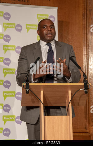 London, United Kingdom. 22 January 2019. People Vote 'Shining a light on alternative Brexit plans' press conference held at the Royal Institute of Chartered Surveyors building in central London. Pictured: David Lammy. Credit: Peter Manning/Alamy Live News - Stock Image