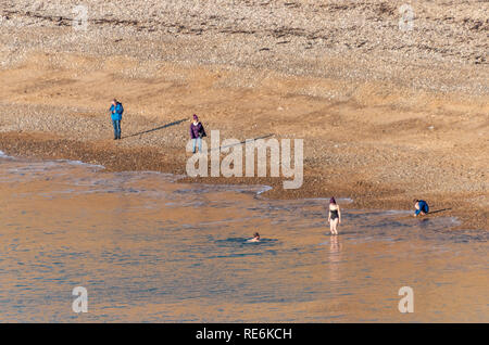 Wareham, UK. Sunday 20th January 2019. Two brave souls go for a swim off Worbarrow Beach on the Jurassic Coast in 4 degree cold but sunny weather. Other people are wrapped up in warm coats. Credit: Thomas Faull/Alamy Live News - Stock Image