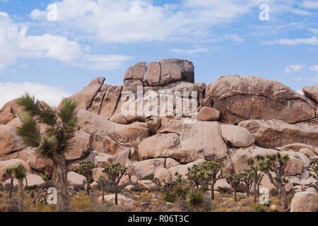 Monzogranite rock formation - Mojave desert, California USA - Stock Image