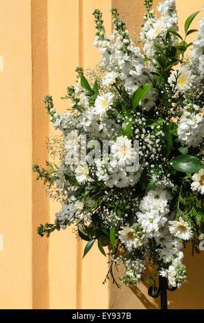 Floral Arrangement of Chrysanthemum and Gypsophila. - Stock Image