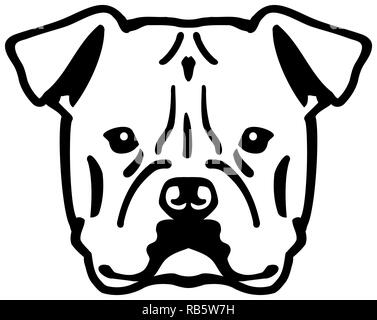 American Bulldog head black with name - Stock Image