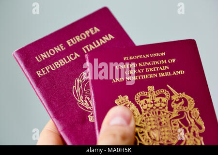 Close up of British passport stacked on top of Italian passports, on grey background. - Stock Image
