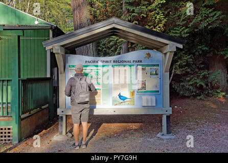 Man looking at a Map of  Pacific Spirit Regional Park and nature preserve at the park's information centre, Vancouver, BC, Canada - Stock Image