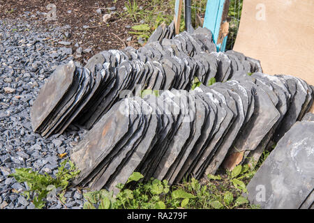 Pile of Bangor Blue slate roof tiles after they have been removed from a roof of abuilding being refurbished. - Stock Image