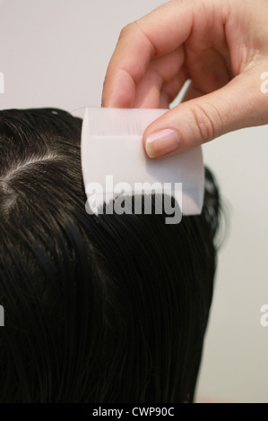 Combing child's hair for headlice - Stock Image