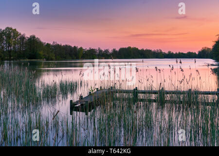 Sunset at Sassenhein, a pond in Haren, close to Groningen, Netherlands - Stock Image