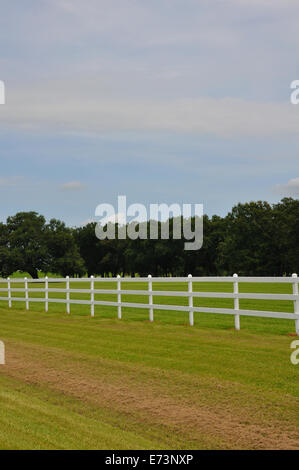 White fence on horse ranch - Stock Image