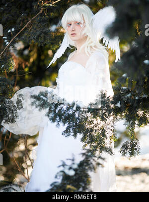 Beautiful blonde girl stands in conifer forest in image of good angel with wings dressed in white clothing. Closeup. - Stock Image