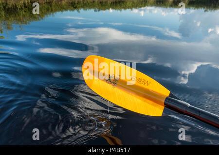 Kayak paddle above mirror reflecting wetlands, Everglades National Park, Miami, Florida, USA - Stock Image