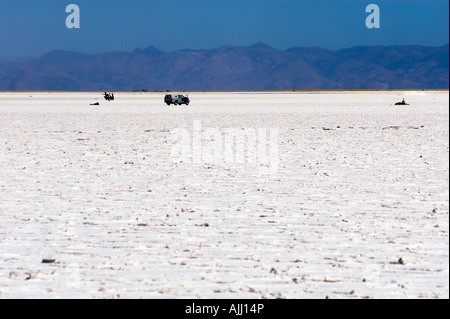 Salinas Grandes in the High Puna, Province of Jujuy, Argentina, South America - Stock Image