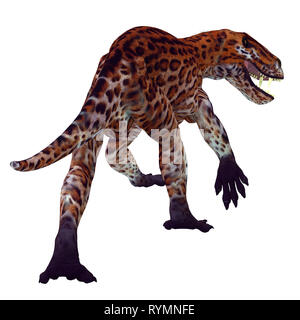 Lycaenops Cat Tail - Lycaenops was a carnivorous cat-like dinosaur that lived in South Africa during the Permian Period. - Stock Image