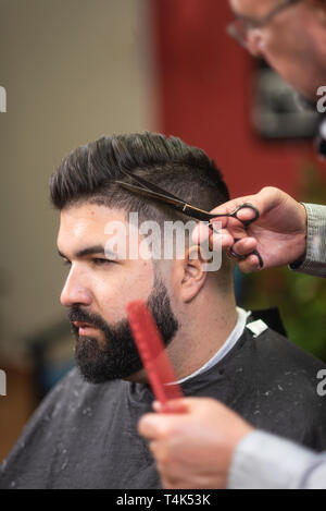Handsome bearded man, having hair cut by scissors at barber shop . - Stock Image