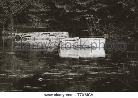 The old zoo at Nuremberg - Stock Image