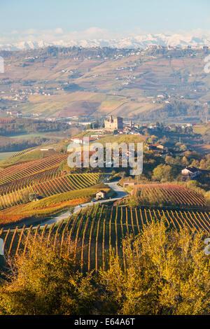 Vineyards & castle; Grinzane Cavour; Cuneo district; Langhe; nr Alba; Langhe; Piedmont (or Piemonte or Piedmonte); - Stock Image