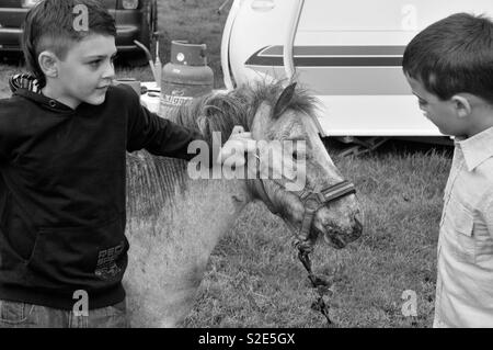 Gypsy boys with pony in the camp - Stock Image