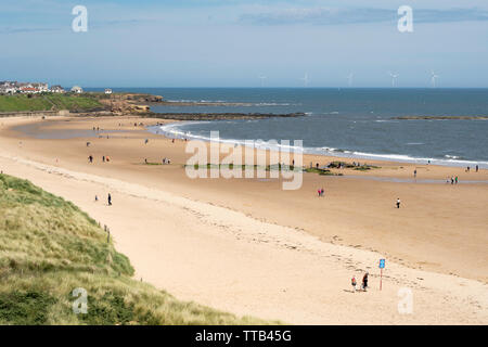 View north along Longsands beach in Tynemouth looking  towards Cullercoats, north east England, UK - Stock Image