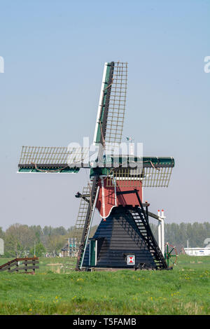 View on traditional Dutch wind mill, spring landscape in North Holland, the Netherlands - Stock Image