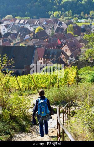 France, Haut Rhin, Alsace Wine Road, Kaysersberg, half-timbering house - Stock Image