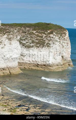 Flamborough Head, Yorkshire coast, British Isles, United Kingdom - Stock Image