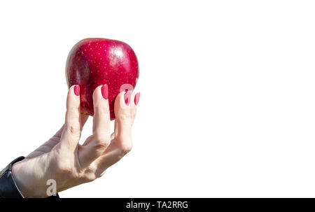 female hand holding a red apple isolated on white background closeup - Stock Image