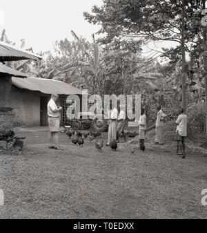 1950s, British farmer with chickens and his African employees on his farm, Uganda, Africa. - Stock Image