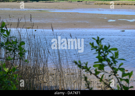 Springtime estuary at low tide. Nevern sands near Newport, Pembrokeshire in Wales. - Stock Image
