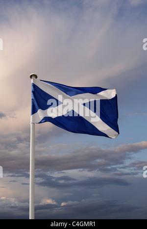 The Scottish flag - Stock Image