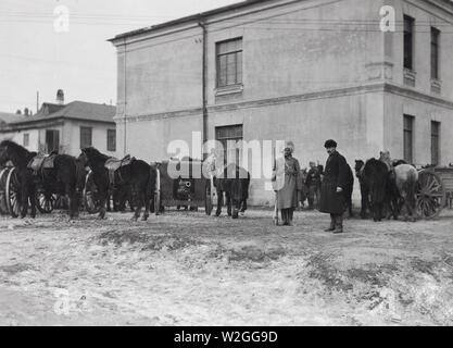 A SECTION OF ARTILLERY belonging to the Social Revolutionists, in rear of the British Mission. Vladivostok, Siberia ca. 1/31/1920 - Stock Image