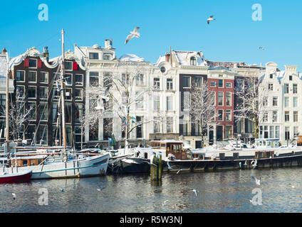 Winter in Amsterdam, white trees, canal, houses, boats. - Stock Image